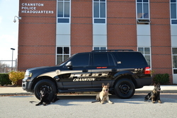 New CPD K-9 Dogs